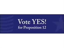 Picture of Vote Yes Banner (VYB#001)