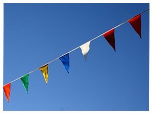 Picture of Multi-Color-Pennant Flags