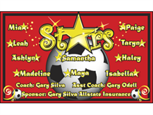 Picture of Stars Soccer  Banner (SSB#001)