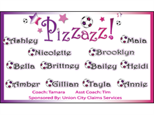 Picture of Pizzazz Soccer  Banner (PSB#001)