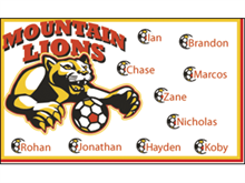 Picture of Mountain Lions Soccer  Banner (MLSB#001)