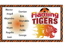 Picture of Flaming Tigers Soccer Banner (FTSB#001)